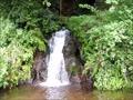 静岡県函南町 不動の滝(田代)